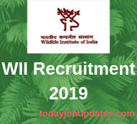 WII Recruitment 2019